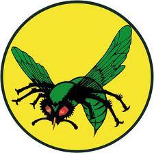 the Green Hornet, Remake, Seth Rogen, Jay Chou, Comic Book Movies, 3D, Michel Gondry, Cameron Diaz, Bromance